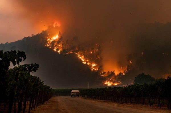 Credit: Daniel Kim, Sacramento Bee, Glass Fire near Calistoga